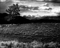 Black and white image of Yellowstone National Park
