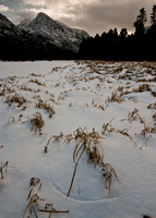 Grass carves out a line in the Snow near Souix Charley Lake