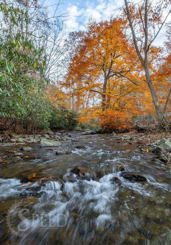 Indian Valley Virginia