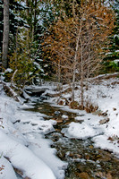 A small creek in the Crazy Mountains.