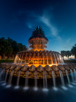 Pineapple Fountain Charleston