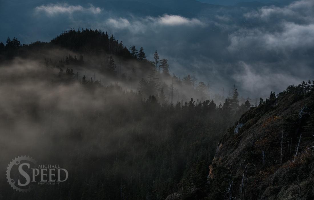 Mt. Leconte hike