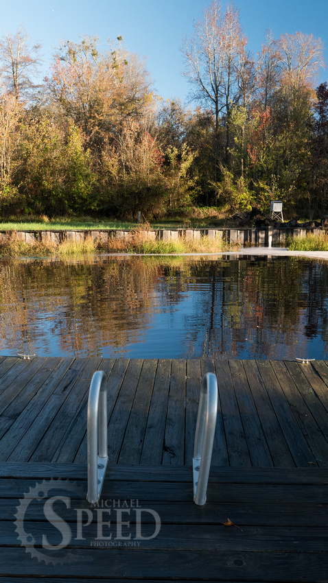 Kayak Trip to Lake Drummond in Great Dismal Swamp