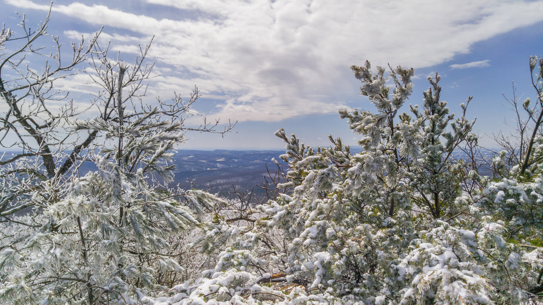 Buffalo Mountain Winter Hike