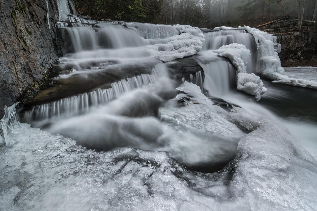 Dismal Fall Winter