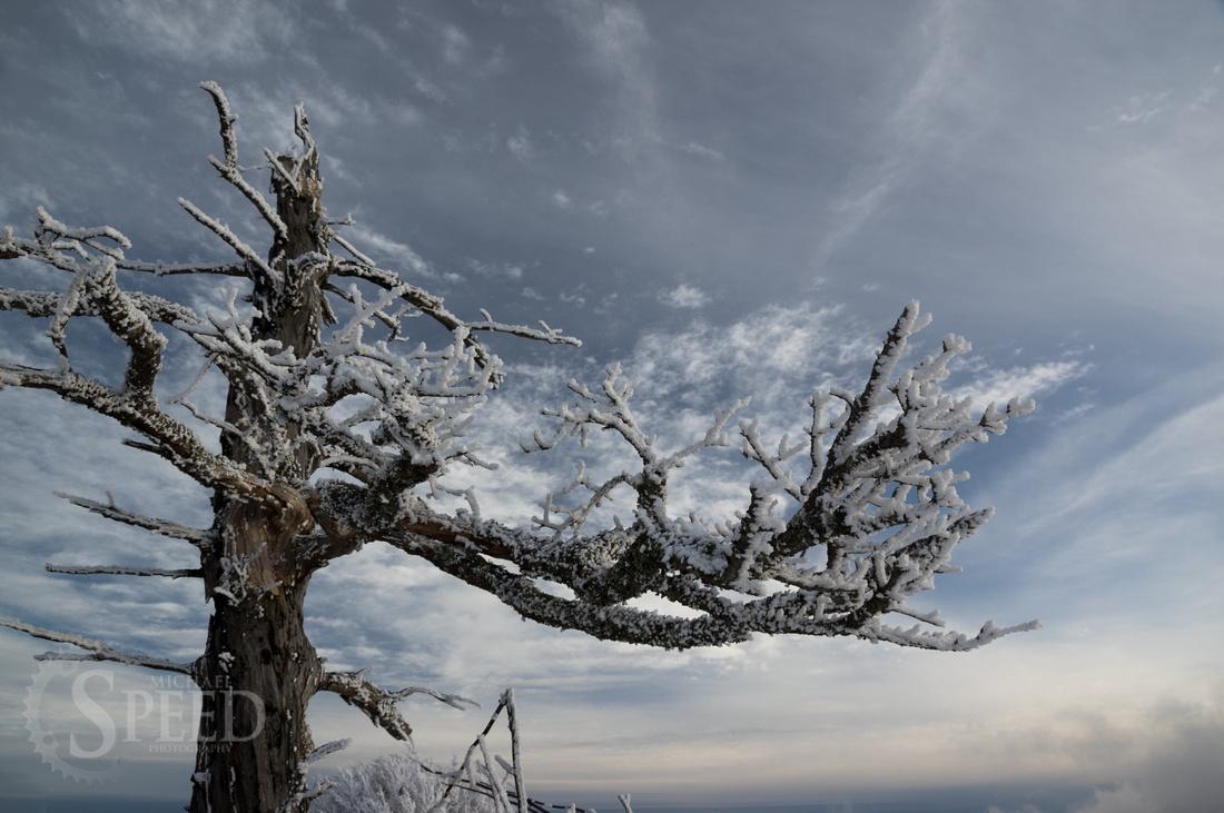 Grayson Highlands Winter
