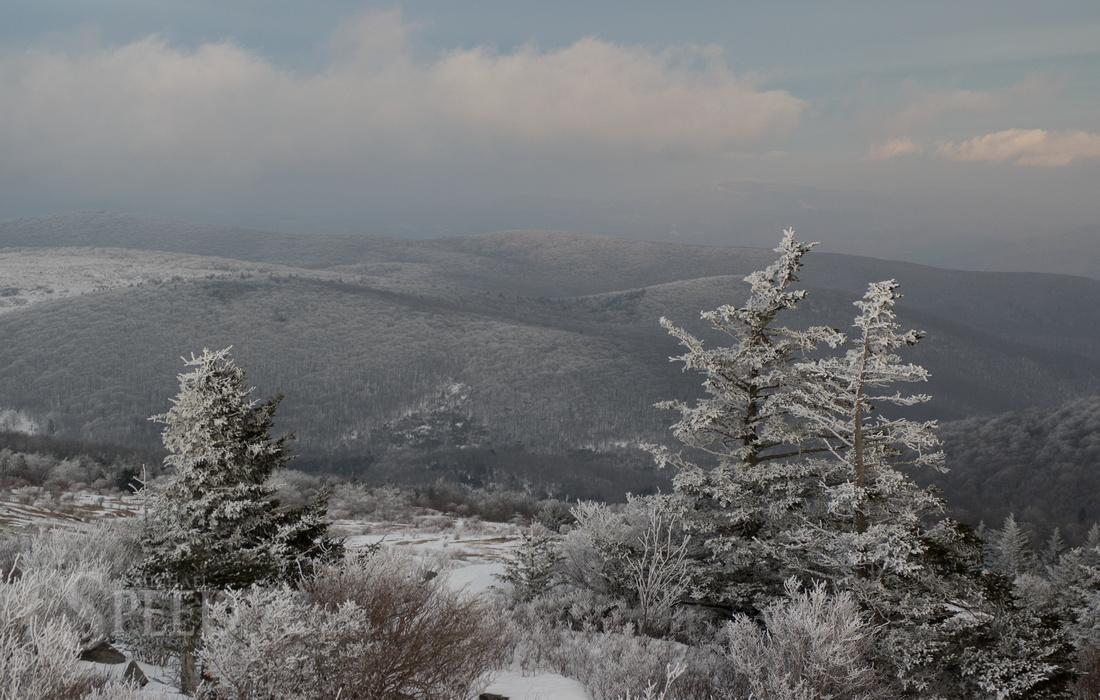 Grayson Highlands Winter